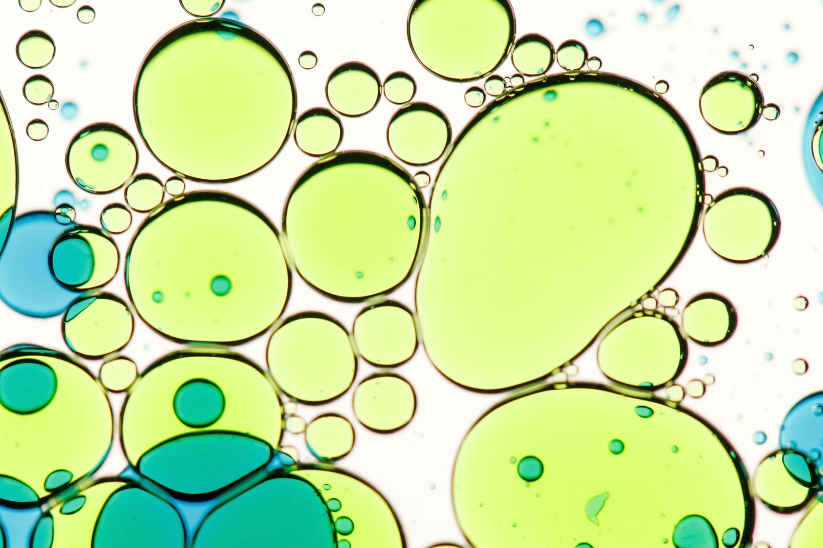 Gelbe Phospholipide Blasen im Wasser
