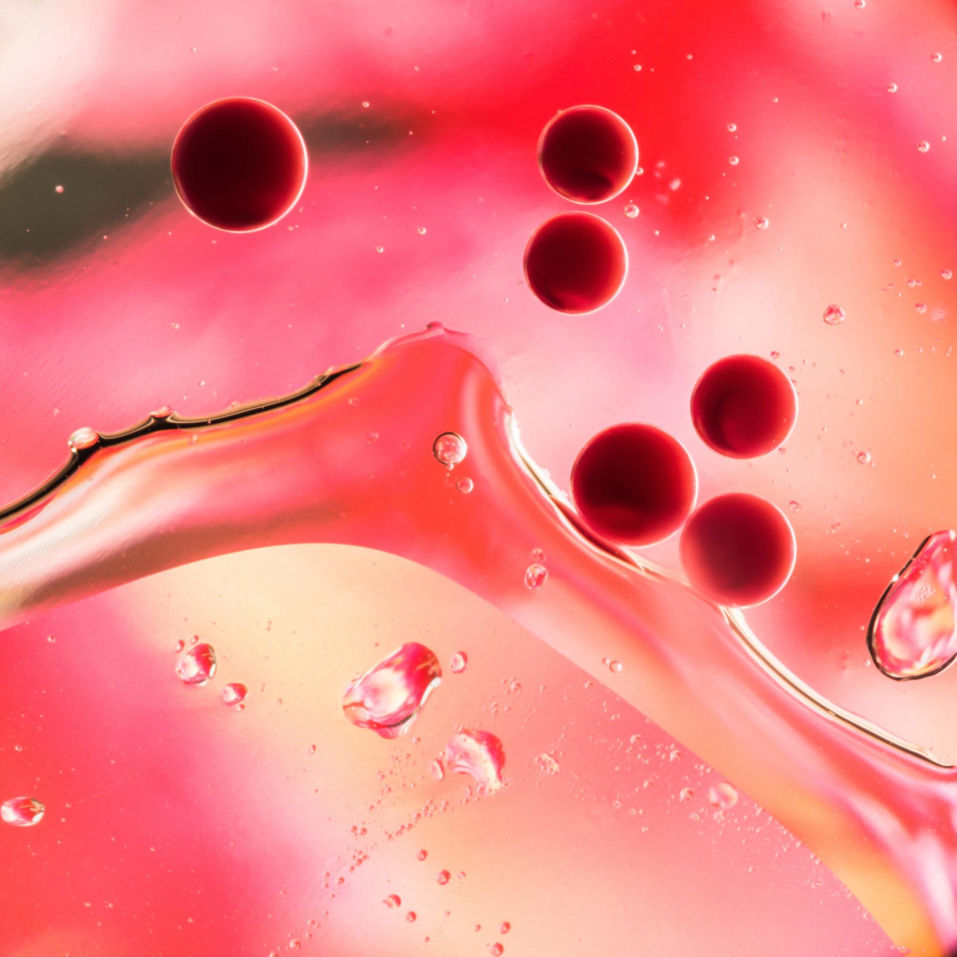 Blutregenalge Astaxanthin