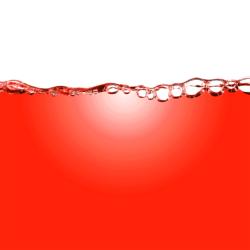 Rote Anti-Aging Wirkstoffe Dayshade